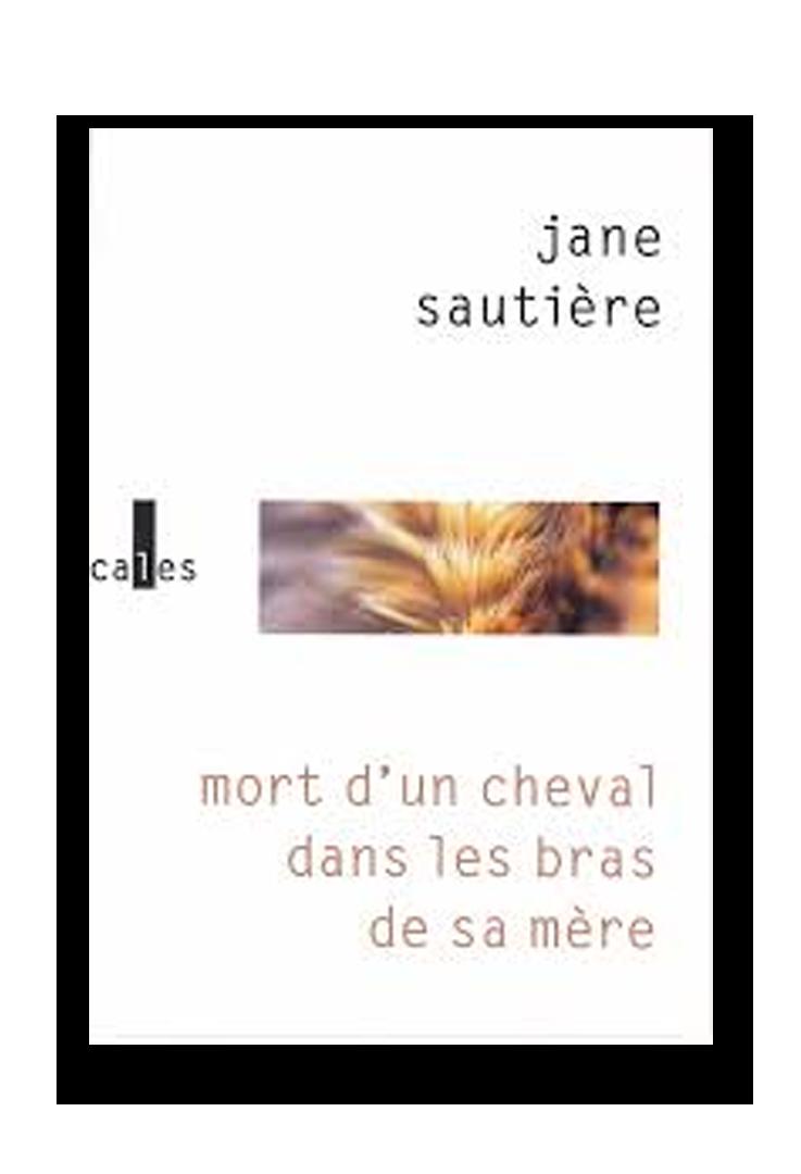 Mort d'un Cheval dans les bras de sa mere, Sautiere_Verticales