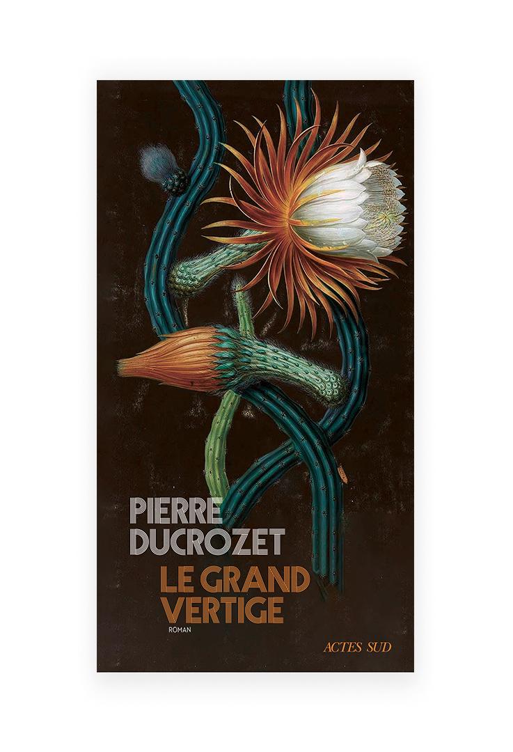 Pierre Ducrozet « Le grand vertige » (Actes Sud)
